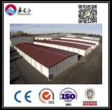 Entrepôt personnalisé par qualité de structure métallique (BYSS014)