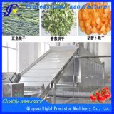 Secador de vegetais desidratados máquina de secagem contínua para produtos agrícolas