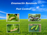 Hot Sale 15% de Insecticida Bioquímico com Emozectina Benzoato de 3% de Ec