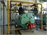 Caldaia a vapore a gas certificata da 2 tonnellate dell'olio del passaggio di standard 3