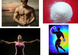 Bodybuilding OEM Nutrition Flavour Glutamine (Fórmula OLP)