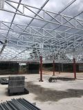 Edificio de la estructura de acero del diseño/máquina ligeros Manufacturers930 del hospicio/del almacén