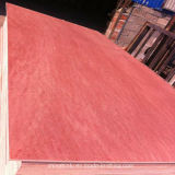 El contrachapado Bintangor/Materiales de Construcción de madera contrachapada/Comercial