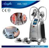 La congelación de la grasa corporal la liposucción la pérdida de peso la escultura de la máquina de adelgazamiento