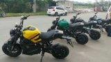 カナダの市場2000Wのためのペダルが付いている電気オートバイ