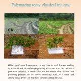 Les oligoéléments de carbone de polymère ont chélaté l'engrais