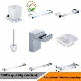 Badkamers de van uitstekende kwaliteit van het Roestvrij staal die voor Badkamers wordt geplaatst
