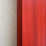 Écologiqueen plastique imperméable au feu de bois composite WPC porte de l'intérieur