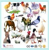 Equipamentos de alimentação de pecuária de avicultura de grande capacidade / Linha de produção de pelotização de animais
