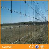 Stahldraht heißes BAD galvanisierter Geflügel-Bereich-Ineinander greifen-Zaun