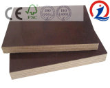 M. Poplar Core Film Plywood de colle de 15mm 1220*2440mm