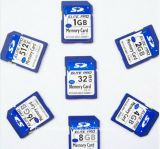 Hoge snelheid BR 4GB 8GB 16GB 32GB 64GB voor Laptop van de Camera de Kaart van het Geheugen