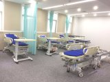 2개의 기능 병원 환자 수동 들것 트롤리 (AG-HS002)