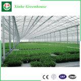 Serre chaude commerciale de jardin de polycarbonate pour la recherche