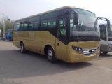 Bus rossi durevoli di corsa della stella del grande di passeggero bus della vettura con una capienza delle 33 sedi