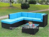 Rota determinada del sofá del patio/conjunto de mimbre de los muebles del jardín