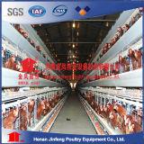 Het Voeden van de Batterij van het gevogelte de Kooi van de Kip van de Apparatuur van het Landbouwbedrijf verkoopt