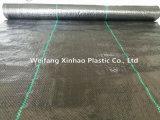 Traitement UV 1X50M/rouleau de tapis tissés de mauvaises herbes pour le Japon avec 80 g/m²
