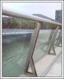 freie 3-19mm/färbten,/bereifte/reflektierende Hartglas für Gebäude