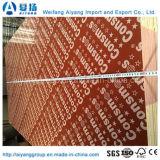 O logotipo imprimiu película vermelha a madeira compensada enfrentada para a construção