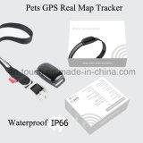 Traqueur des animaux familiers GPS avec la carte réelle suivant et plaçant (EV-200)