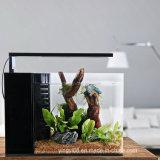 En acrylique de gros poissons d'aquarium réservoir d'affichage