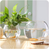 Mini redonda Tazón de peces de acuario pecera de vidrio