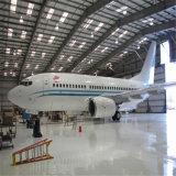 Hangar profesional del almacén del marco de la estructura de acero del diseño