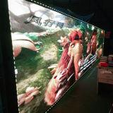 풀 컬러 휴대용 유연한 실내 발광 다이오드 표시 스크린