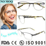 Freies Beispieloptischer Rahmen-Großverkauf-Frauen Eyewear fantastische rostfreie Brille