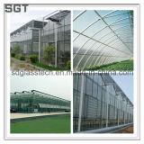 園芸のための強くされたガラス低い鉄ガラス