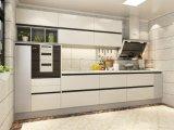 De uitstekende kwaliteit paste de Moderne Lineaire Keukenkasten van de Stijl aan