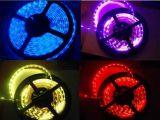 Indicatore luminoso di striscia flessibile di colore rosso SMD 3528 con Ce e RoHS
