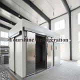 Congélateur modulaire Cold Storage chambre froide pour l'hôtel