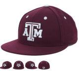 Großer neuer Hut-kühle Baseballmütze der Form-2017
