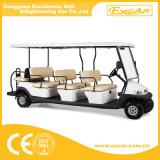 11のシートの高品質の電気観光のバギー
