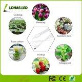Todo o espectro de plantas a crescer o tubo de luz de LED de luz para as plantas em casa