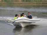 Liya 4.3mの中国の肋骨のボートのガラス繊維の貨幣のボート