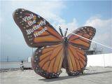Aerostati giganti della farfalla gonfiabile (K2056)