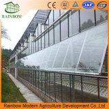 Système de ventilation d'industrie pour la serre chaude/volaille