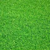 Putting Green sintético y césped artificial para Golf (GFN)