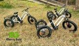 3 바퀴 뚱뚱한 타이어 500W 화물 전기 Trike