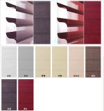 가정 사용 Shangrila는 감미로운 색깔을 를 위한 선택한다 눈 멀게 한다