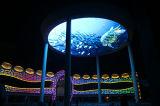 Schermo esterno del ferro LED di colore completo P16