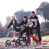 Bici eléctrica del mini plegamiento de 16 pulgadas con la batería ocultada