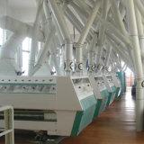 500t/24h de Machine van de Molen van het Tarwemeel voor de Markt van Afrika