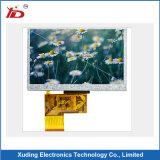 Visualización reflexiva del Tn LCD para el contador