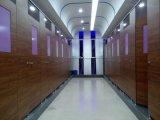 13 mm stratifié HPL Salle de bains publics Partion