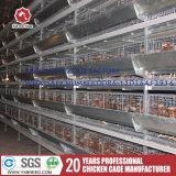 공장 공급자 가금 장비 자동적인 닭 층 감금소 디자인