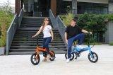 [ليثيوم-يون] بطّاريّة درّاجة كهربائيّة, [إ] درّاجة مع دوّاسة